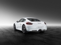 porsche-exclusive-cayman-s-03