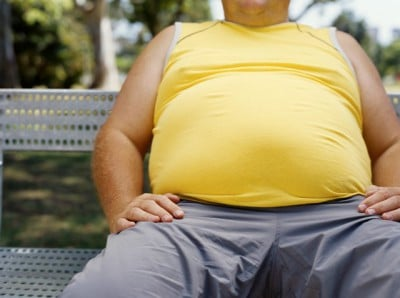 obesity-fuel-consumption-and-safety-risk