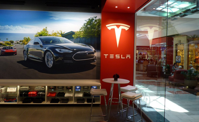 Tesla Fan Petitions Government to Allow Brand's Stores