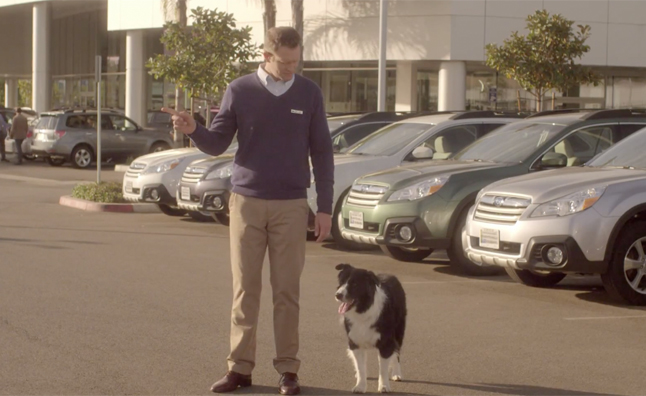 Subaru Seeks to Make Car Crashes Safer for Dogs