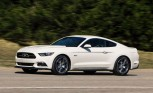 Ford Mustang 50 Years Limited Edition Raises $170K at Auction