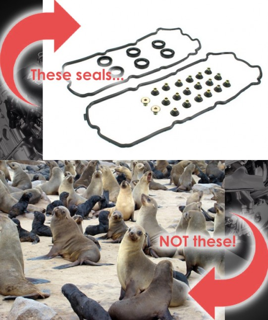 Different Seals
