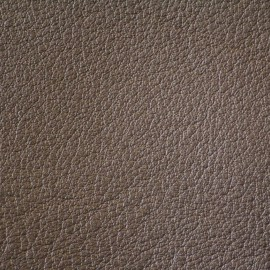 Corinova Leather Sample