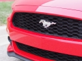 2016-Ford-Mustang-EcoBoost-Grille-01