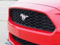 2016-Ford-Mustang-EcoBoost-Grille-02