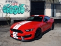 2017 Ford Mustang Shelby GT350-19