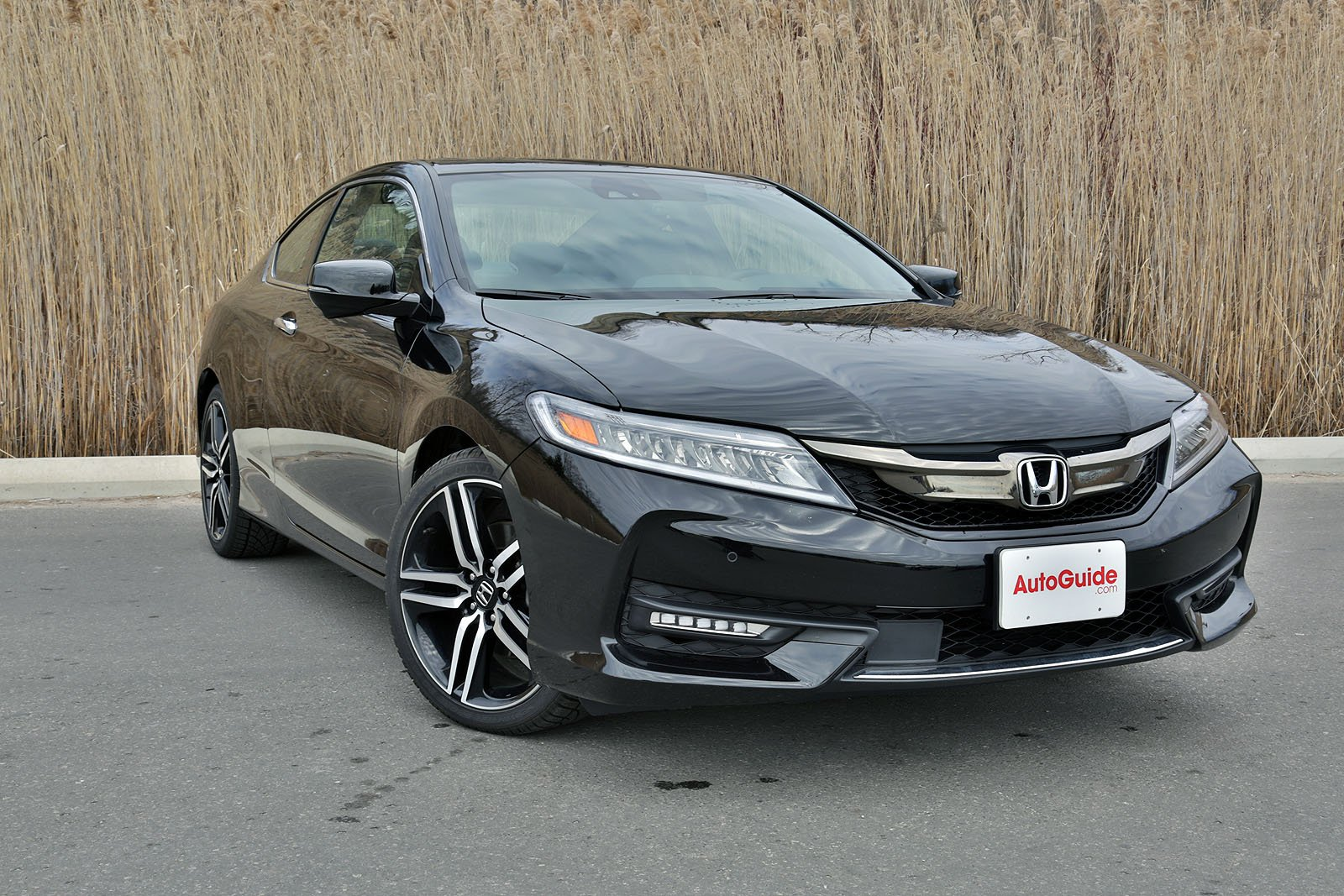 Honda Accord Coupe Touring Review