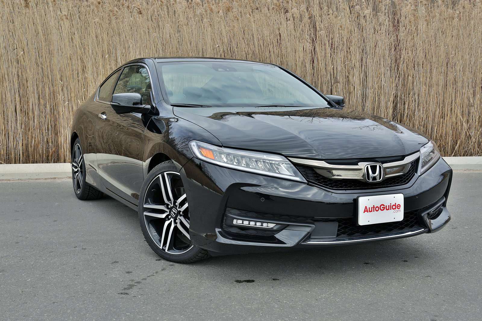 2016 honda accord coupe review quick take. Black Bedroom Furniture Sets. Home Design Ideas
