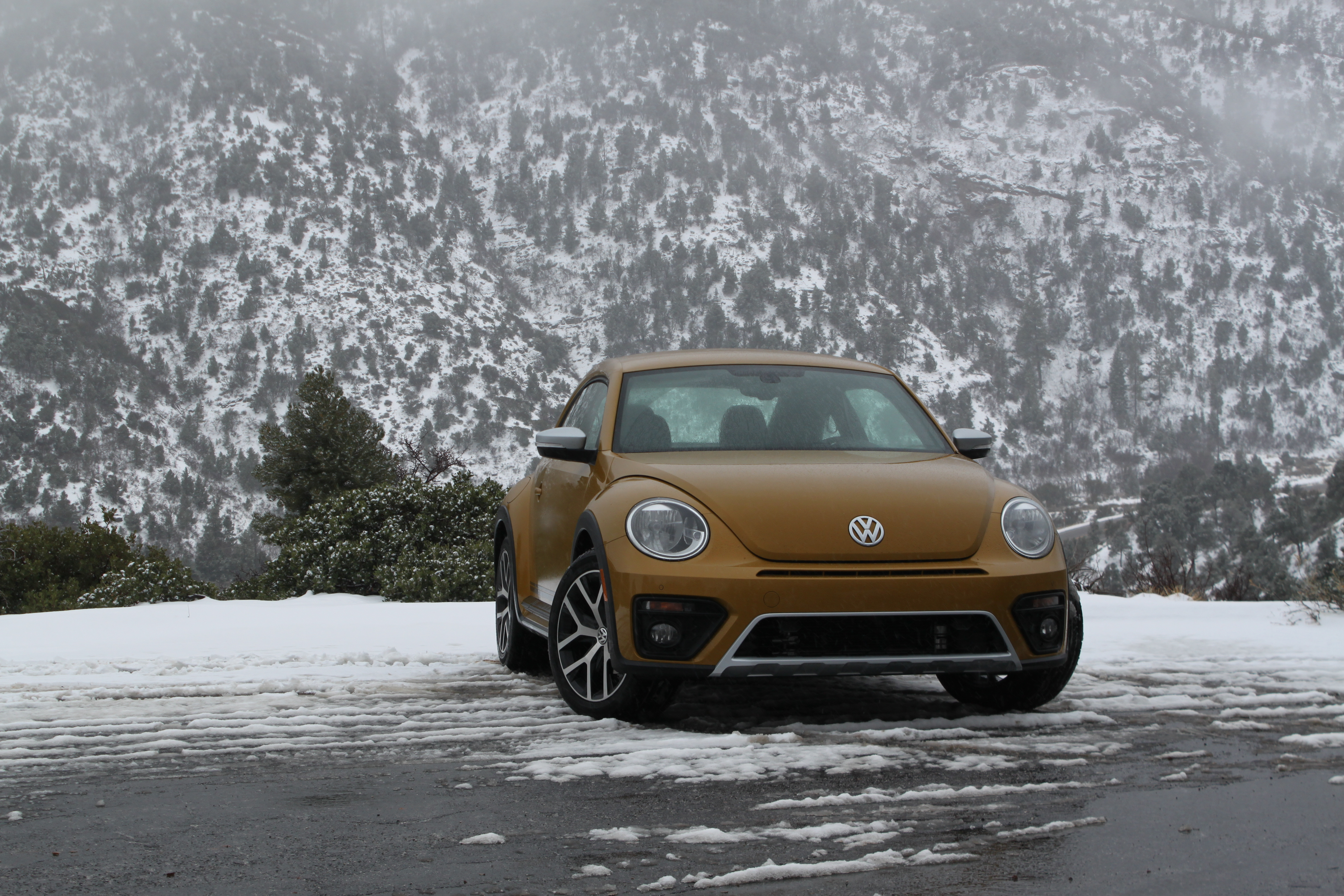 2016 Vw Beetle Dune Review 2
