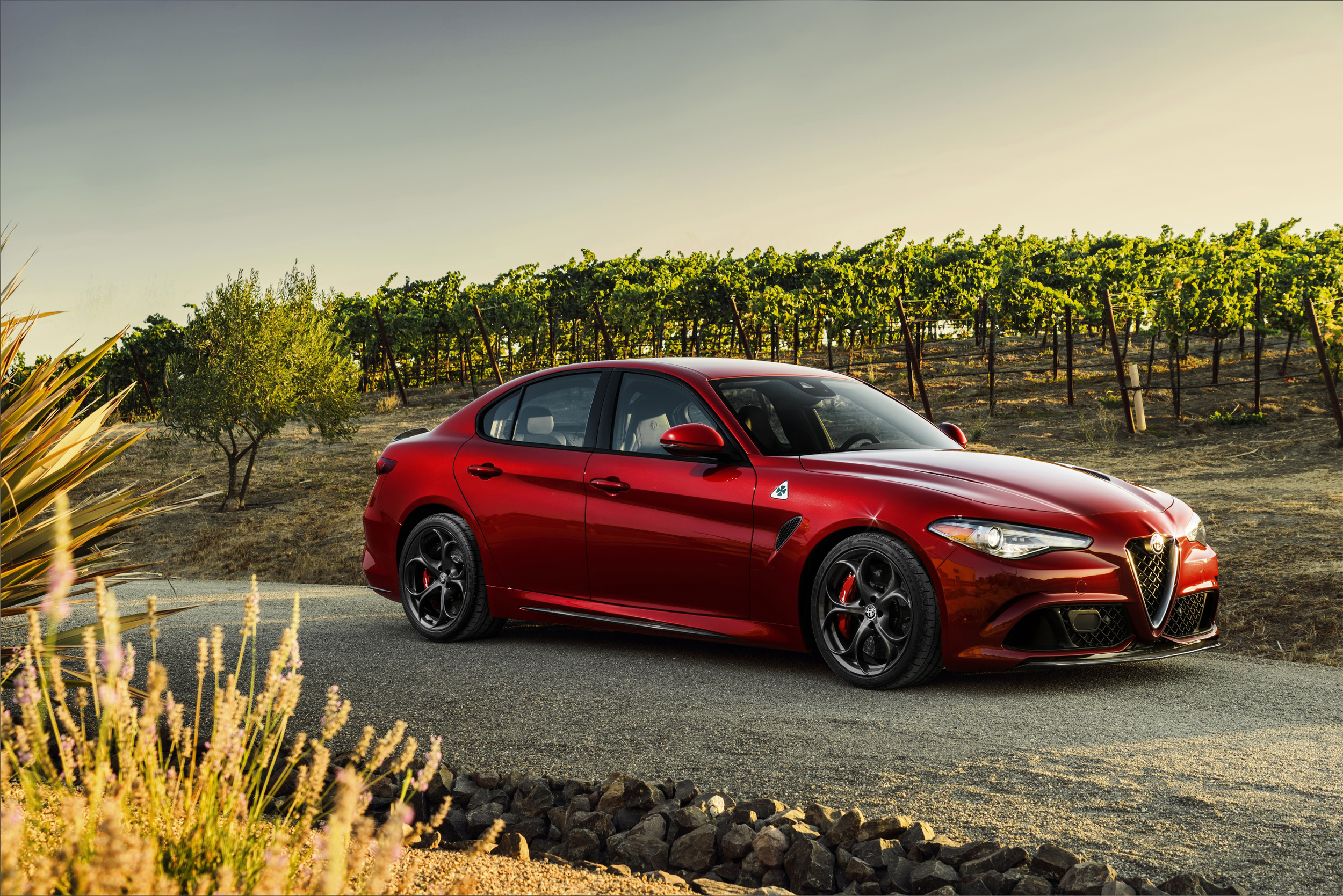 alfa romeo giulia quadrifoglio gets extra standard. Black Bedroom Furniture Sets. Home Design Ideas