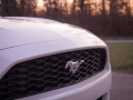 2017-Ford-EcoBoost-Mustang-Ford-Performance-Grille-02