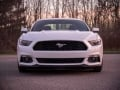 2017-Ford-EcoBoost-Mustang-Ford-Performance-Grille