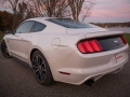 2017-Ford-EcoBoost-Mustang-Ford-Performance-Rear-Three-Quarter