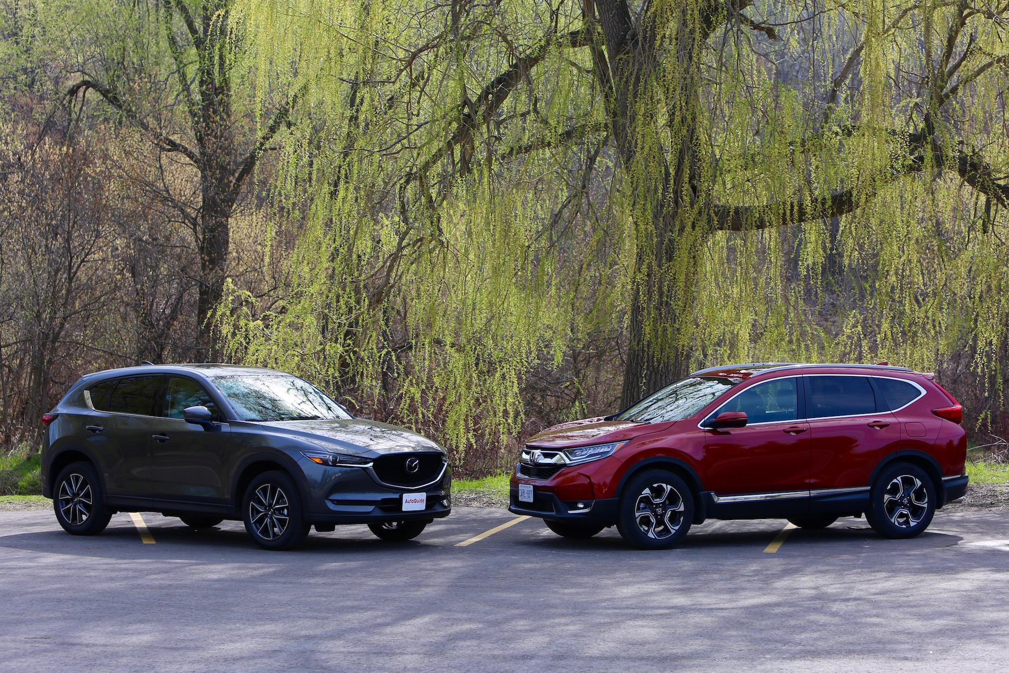2017-Honda-CRV-vs-2017-Mazda-CX5-01 Take A Look About Honda Cr 100