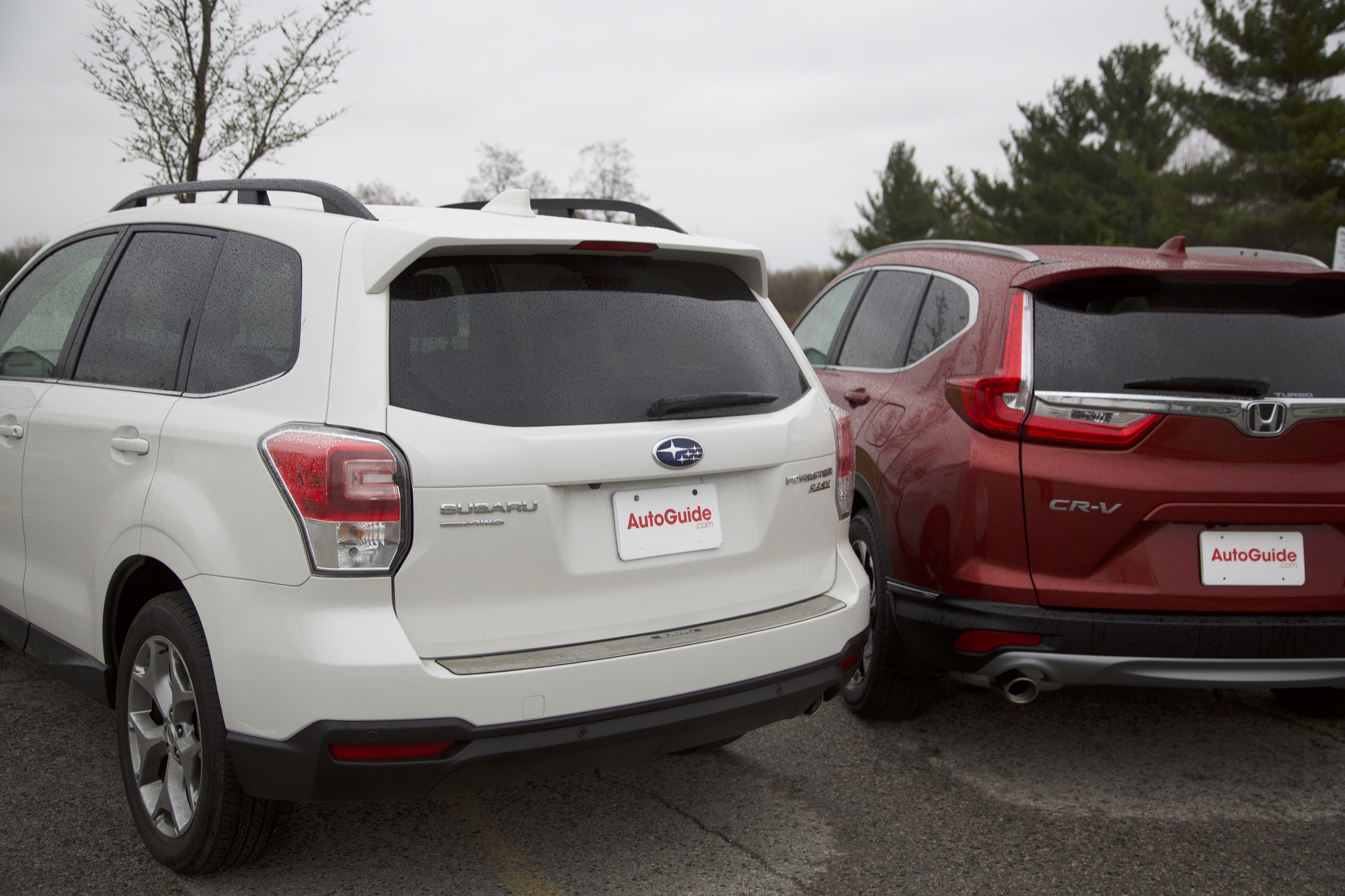 Subaru vs honda ibizanewhaven for Honda crv vs subaru forester