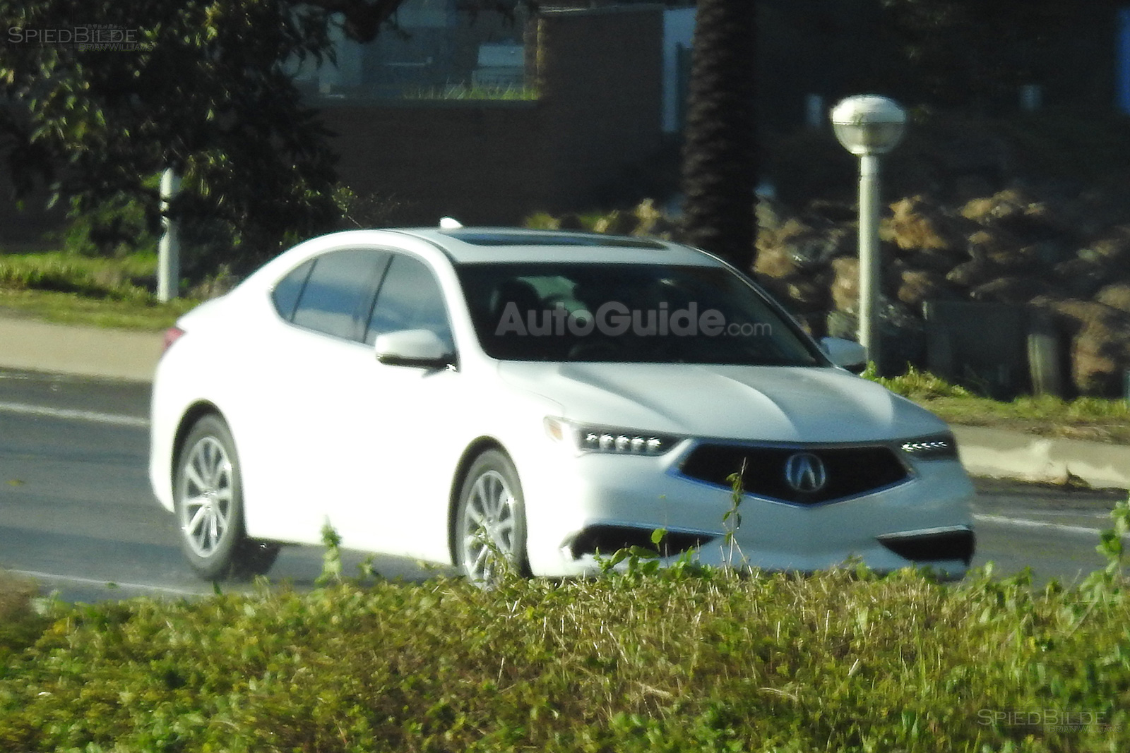 Redesigned 2018 Acura Tlx Spied Fully Exposed Autoguide Com News