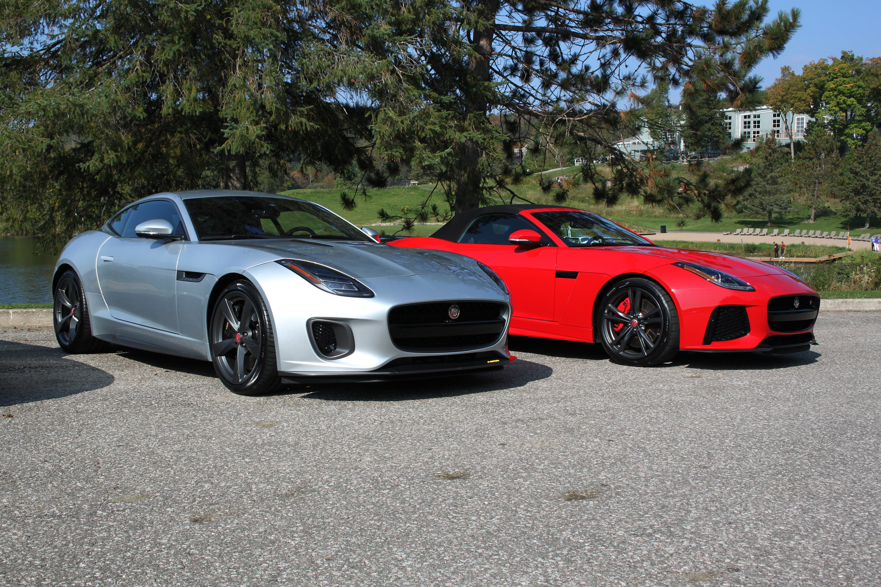 ... Jaguar F Types Together (2) ...
