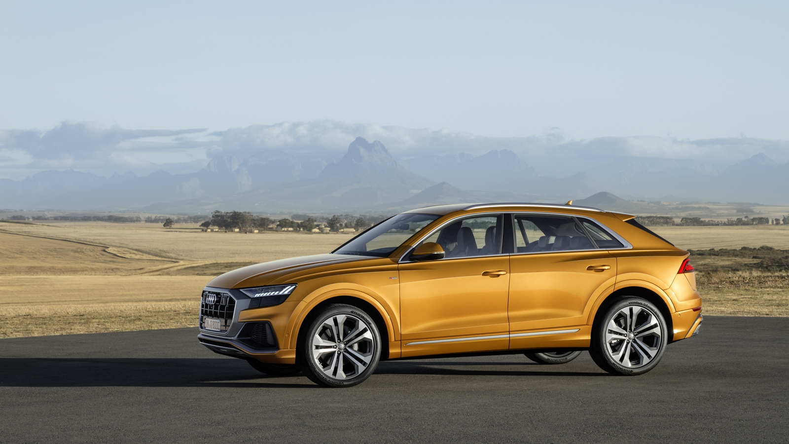 2019 Audi Q8 Debuts With 48V Mild Hybrid V6, All-Wheel