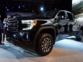 2019 GMC Sierra AT4-21
