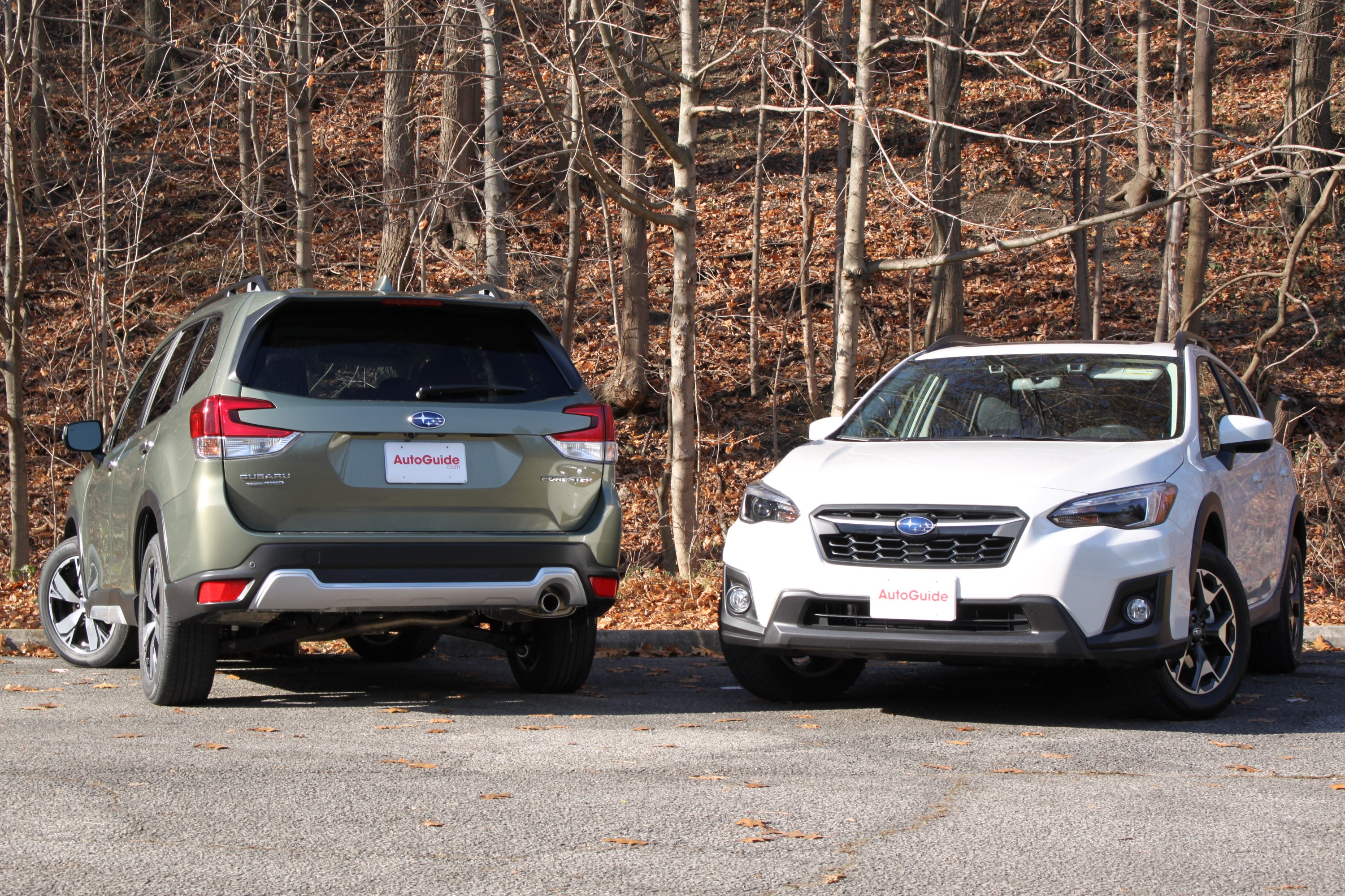 Forester Vs Crosstrek 10 Online Gallery