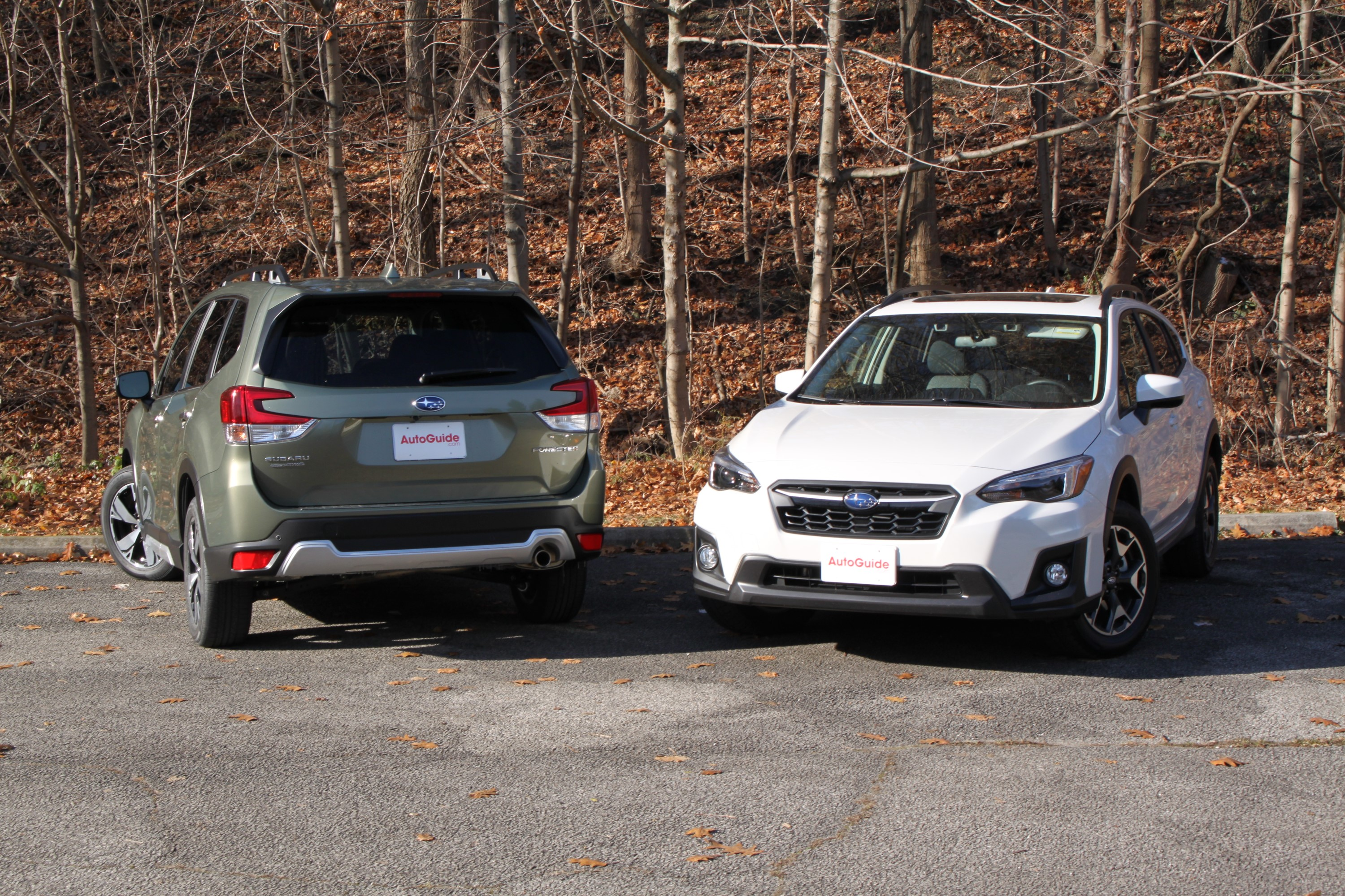 Forester Vs Crosstrek 8 Online Gallery