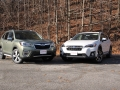 Forester vs Crosstrek (11) (Online Gallery)