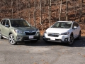Forester vs Crosstrek (12) (Online Gallery)