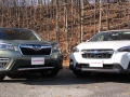 Forester vs Crosstrek (13) (Online Gallery)