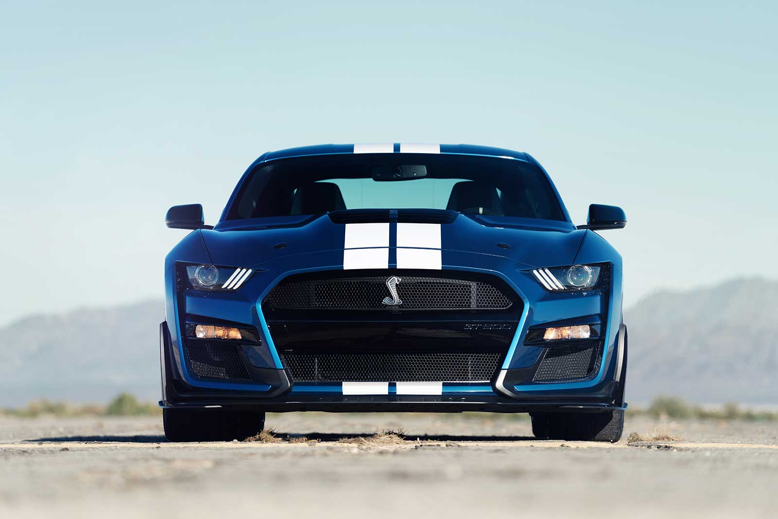2020 Ford Mustang Shelby Gt500 Has Supercharged V8 More Than 700 Hp