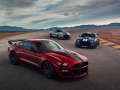 2020-Ford-Mustang-Shelby-GT500-59