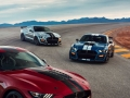 2020-Ford-Mustang-Shelby-GT500-60
