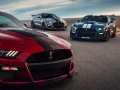 2020-Ford-Mustang-Shelby-GT500-61