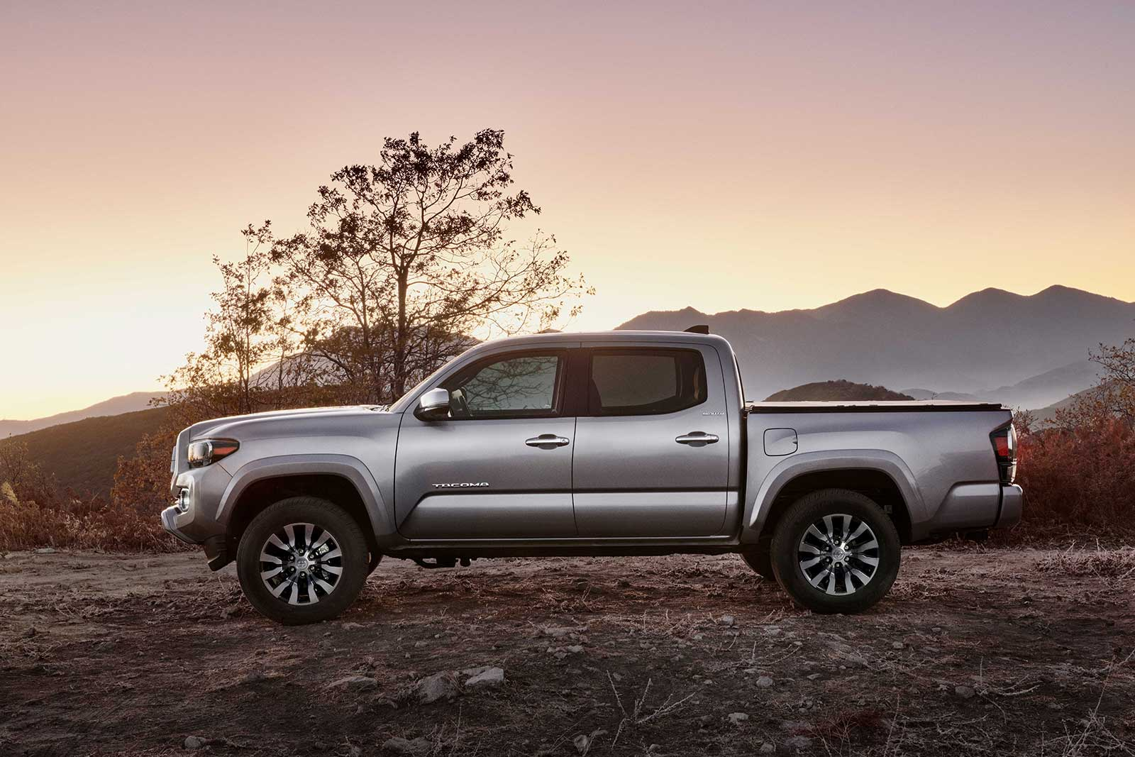 Toyota Tacoma Receives Mildest of Updates for 2020 ...