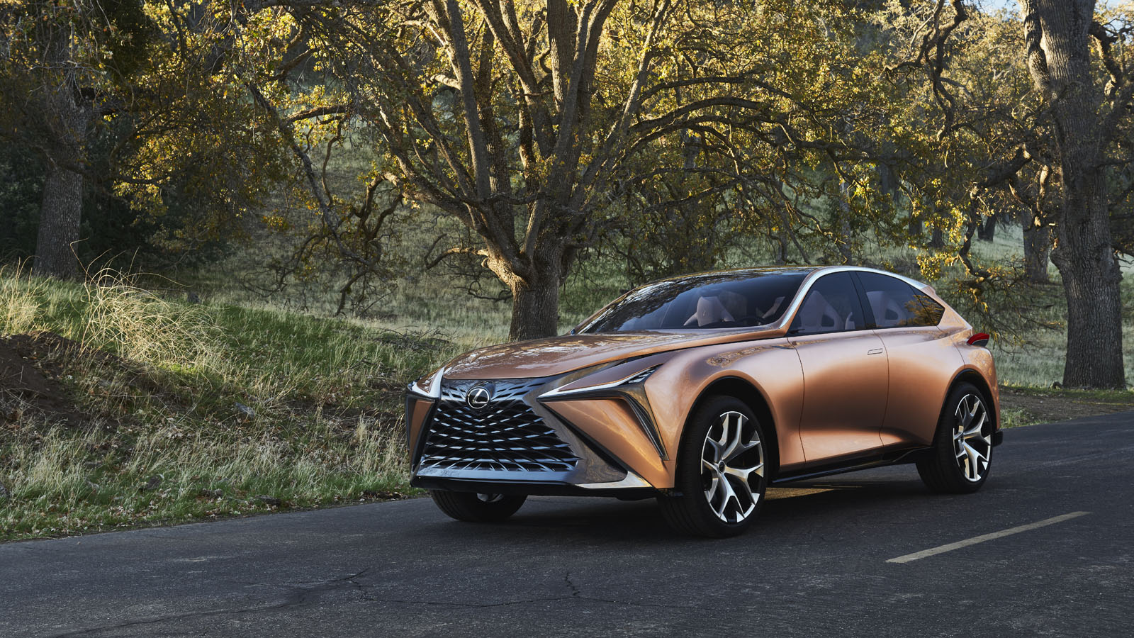 lexus lf 1 concept previews new luxury crossover 5 things you need to know news. Black Bedroom Furniture Sets. Home Design Ideas