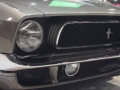 Muscle Cars (106)