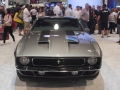 Muscle Cars (108)