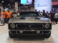 Muscle Cars (111)
