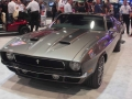 Muscle Cars (78)