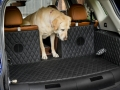 nissan-rogue-dogue-project-15