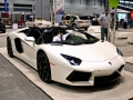 Supercars of Chicago Auto Show-26