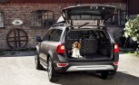 What Pet Owners Need to Look for When Buying a Car