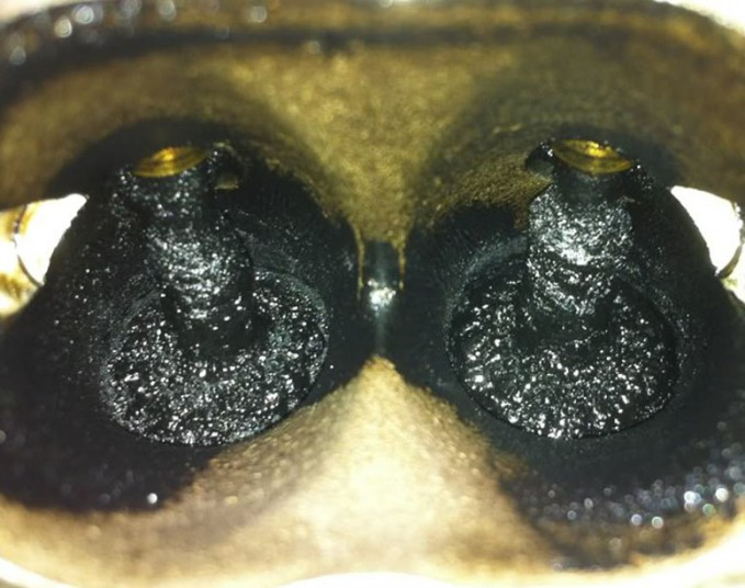 Carbon Buildup
