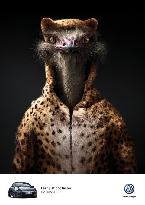 Volkswagen Ad - Ostrich wearing cheetah sweater