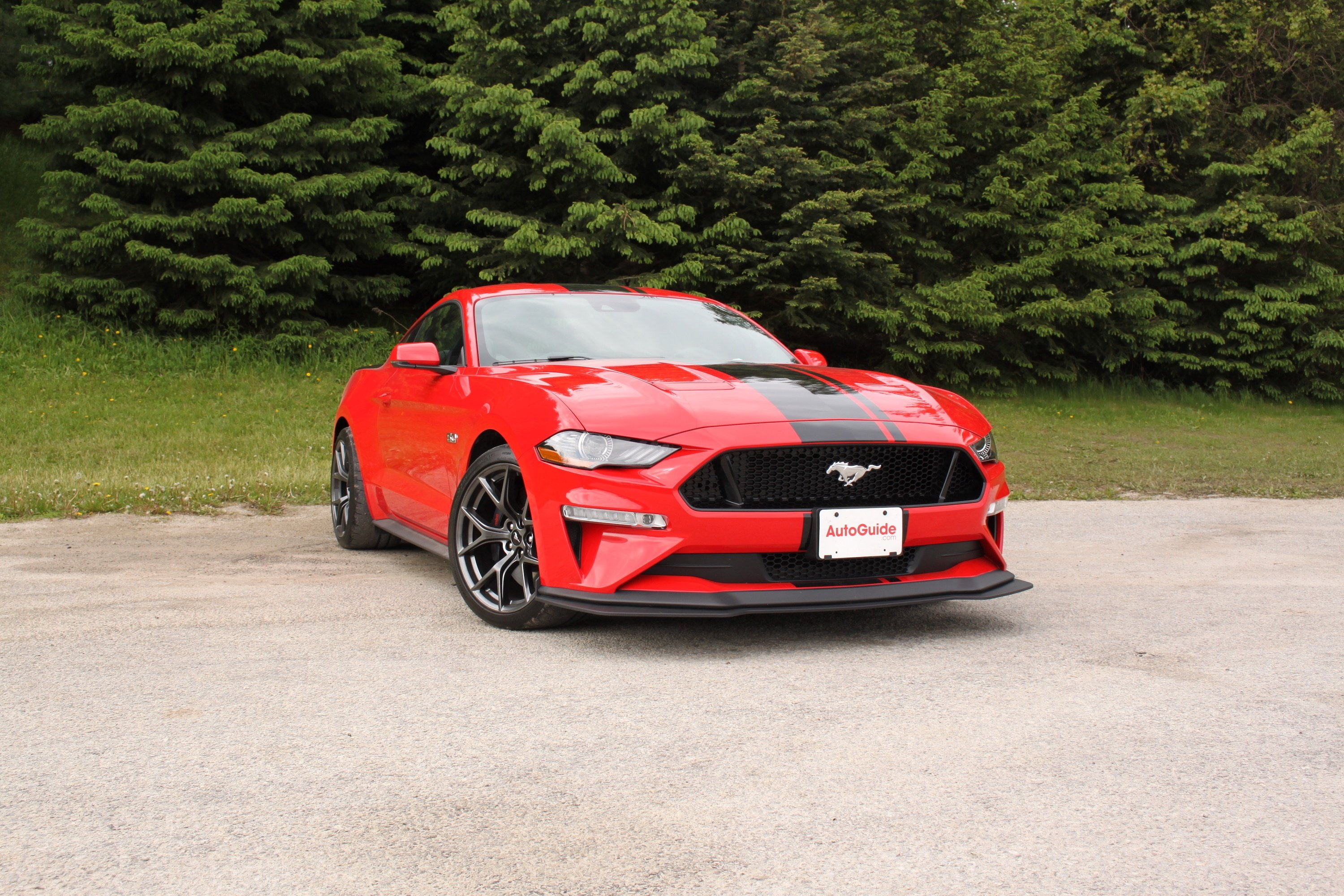 2020 Ford Mustang Gt Coupe Price